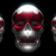 Halloween_Skull_Bones_3D_Animation_Video_Footage_VJ_Loop