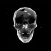 skull statue holographic video vj loop