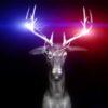 Neon_Deers_EDM_Visuals_Beat_VJ_Loops_3D_Animation