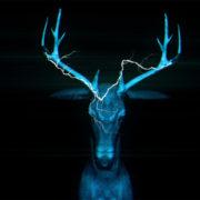 Neon_Deers_VJ_Loops_VIsuals_Motion_Backgrounds_Layer_483