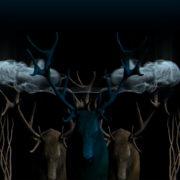 Neon_Deers_VJ_Loops_VIsuals_Motion_Backgrounds_Layer_485