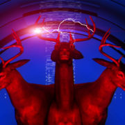 Neon_Deers_VJ_Loops_VIsuals_Motion_Backgrounds_Layer_505