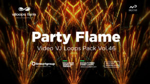 PartyFlame46