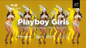 PlayboyGirls-Vjloops