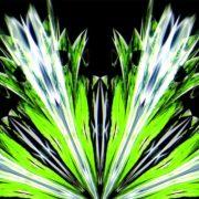 green wave fire video art hd vj loop