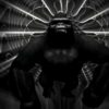 vj loops monkey ape gorilla 3d animation