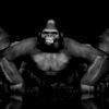 Rave_Apes_Monkey_Gorilla_Video_Footage_3D_Animation_VJ_Loop