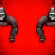 Rave_Apes_Monkey_Gorilla_Video_Footage_3D_Animation_VJ_Loop_Layer_24