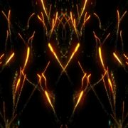 Scintillation fireworks visuals Abstract Background. Loop Animation_vj_loops_Layer