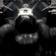 gorilla wallpaper monkey vj loop