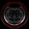 circular pattern Neuro Columns Wallpaper