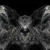 metamorphose of amorphous shape abstract animation 4k on black background Wallpaper