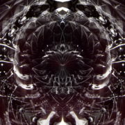 Black-Foil-Wireframe-Circle-Black-Shift-Video-Art-Pattern-Video-Art-VJ-Loop_008 VJ Loops Farm