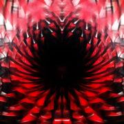 Abstract-background-Circle-Ring-red-palette-Video-Art-VJ-Loop_005 VJ Loops Farm
