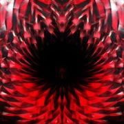 Abstract-background-Circle-Ring-red-palette-Video-Art-VJ-Loop_007 VJ Loops Farm