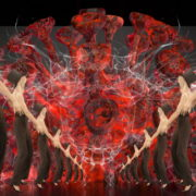 Corona-Virus-Girl-Dancing-on-Covid19-Cell-with-strobing-red-white-effect-video-art-4K-VJ-Footage-1920_007 VJ Loops Farm