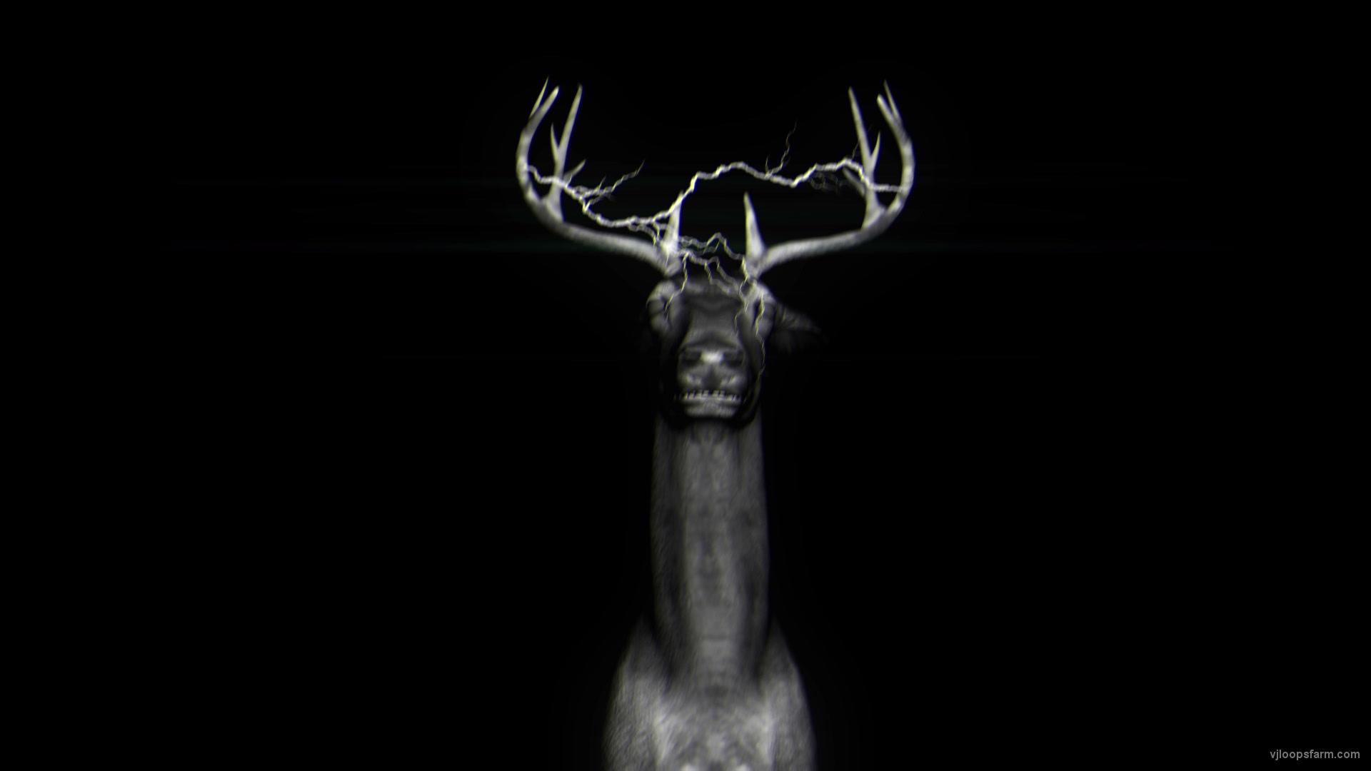 vj video background Dubstep-Neon-deers-Concert-decoration-VJ-Loop-LIMEART-FullHD_003