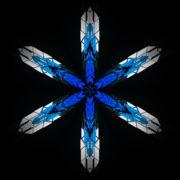 Hexagram-6-point-blue-star-Geometric-snowflake-Full-HD-Video-Art-Symbolic-Vj-Loop_009 VJ Loops Farm