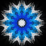 Twelve-points-star-snowflake-christmas-techno-geometric-sign-video-art-VJ-Loop_008 VJ Loops Farm