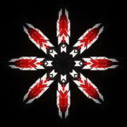WindRose-Geometric-Flower-fullhd-VIdeo-Art-VJ-Loop_002 VJ Loops Farm