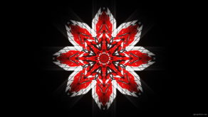 vj video background WindRose-Geometric-Flower-fullhd-VIdeo-Art-VJ-Loop_003