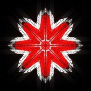 WindRose-Geometric-Flower-fullhd-VIdeo-Art-VJ-Loop_006 VJ Loops Farm