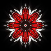 WindRose-Geometric-Flower-fullhd-VIdeo-Art-VJ-Loop_007 VJ Loops Farm