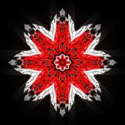 WindRose-Geometric-Flower-fullhd-VIdeo-Art-VJ-Loop_008 VJ Loops Farm