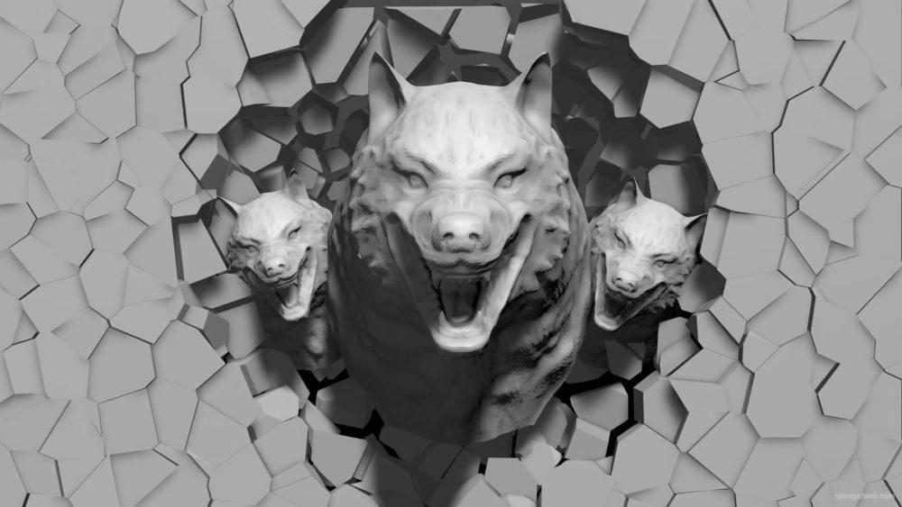 Angry-Wolf-3D-Projection-Head-demolish-on-wall-Mapping-Loop-gyqaxh-1920_005 VJ Loops Farm