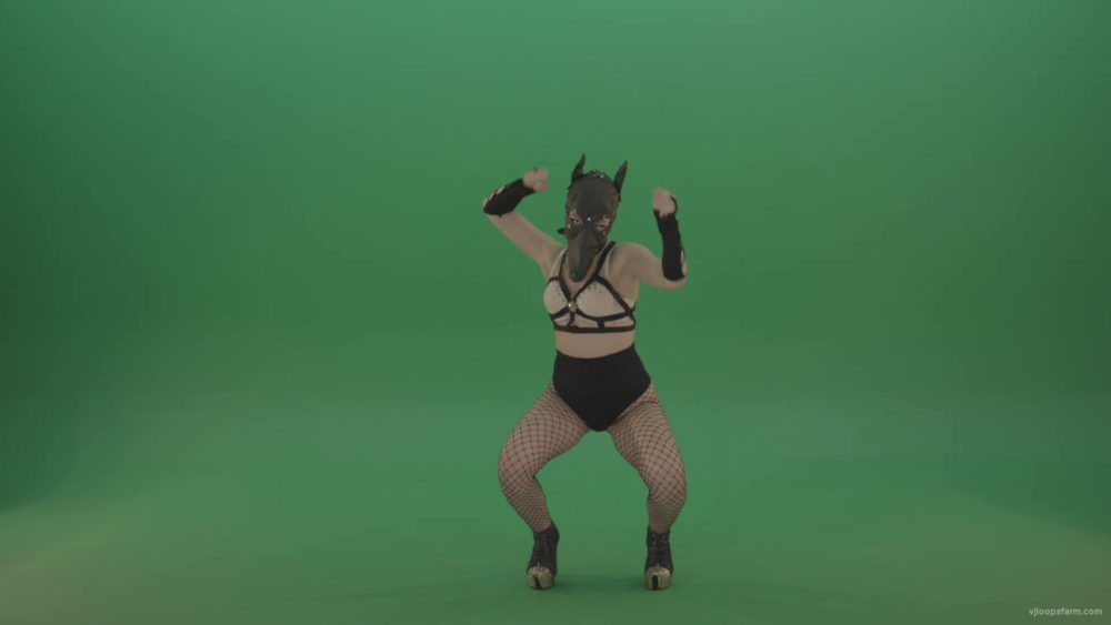 vj video background Girl-in-wolf-fetish-mask-sit-down-and-stand-up-making-hand-beat-on-green-screen-hxmhuw-1920_003