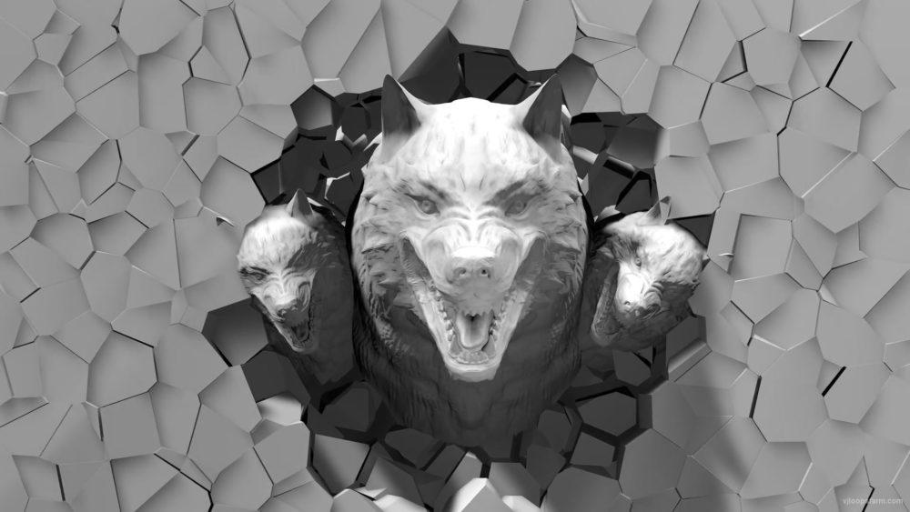 Halloween-Wolf-3D-head-projection-Video-Mapping-Loop-7en9gd-1920_005 VJ Loops Farm