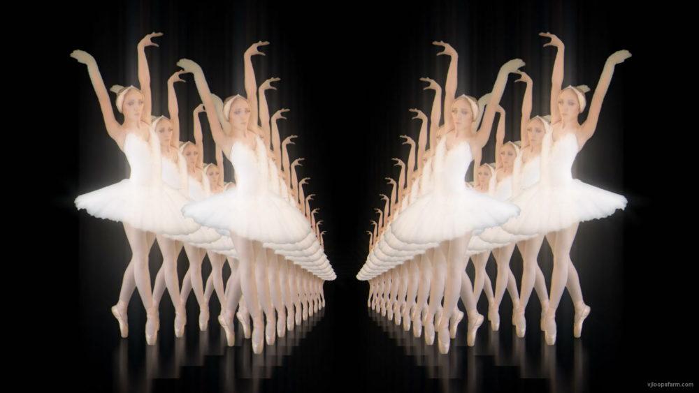 Classical-ballet-swan-russian-opera-dance-video-art-vj-footage-4K-9e1je9-1920_005 VJ Loops Farm