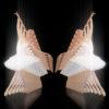 arure ballet vj loops pack