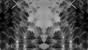 Abstract-mirroring-flying-sand-monochromatic-looped-animation-fkzdev-1920_005 VJ Loops Farm